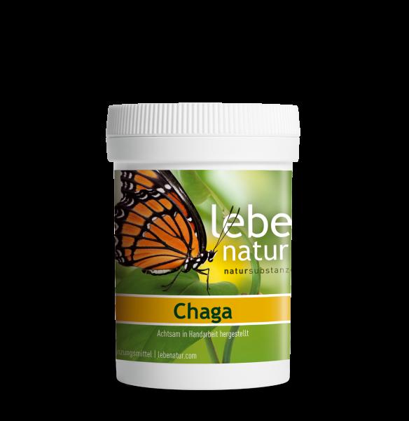 lebe natur® Chaga Pilz 90er