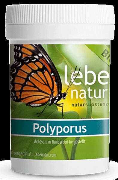 lebe natur® Polyporus Pilz BIO