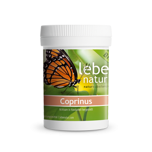 lebe natur® Coprinus Pilz BIO 90er